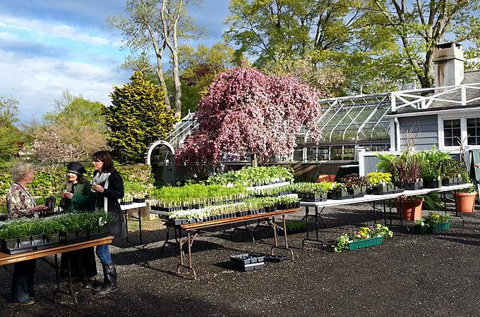 Caudatowa Garden Club Of Ridgefield